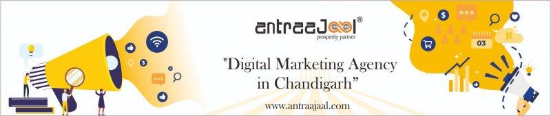 Digital Marketing Agency Chandigarh