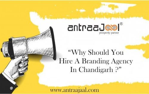 why should you hire a branding agency in chandigarh