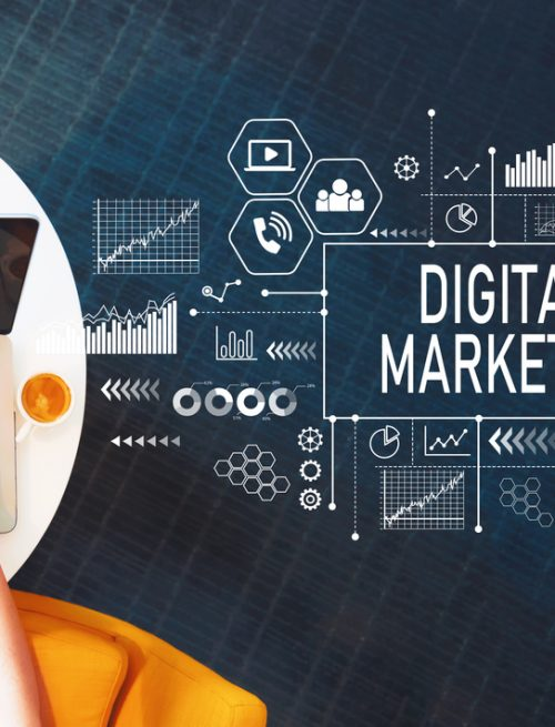 What is the future of Digital marketing agency in Chandigarh?
